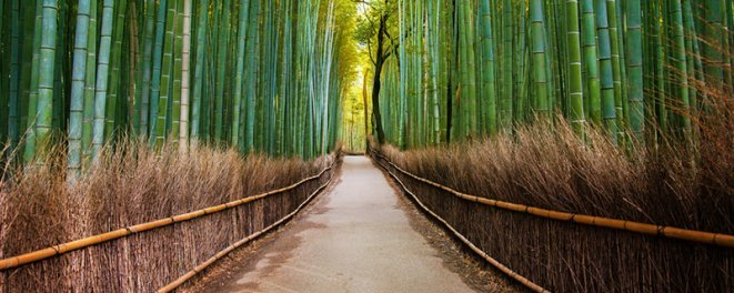 Attractions-Japan
