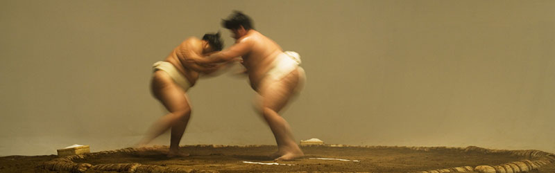 Top-Japan-Sumo-Wrestling